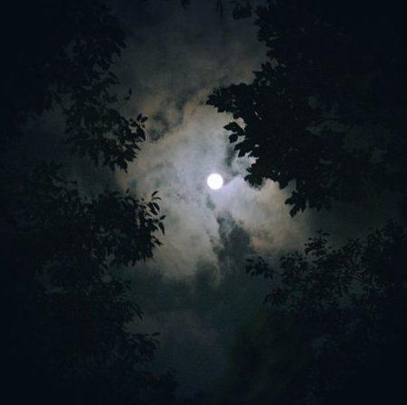 Nachtjagd